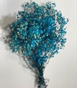 Cipso çiçek