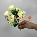 Krem Küçük Şakayık ÇiçeğiKrem Küçük Şakayık Çiçeği