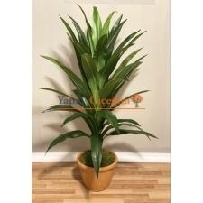 Saksılı Yapay Ağaç Drecina Ağacı 140cm Dracaena Plant