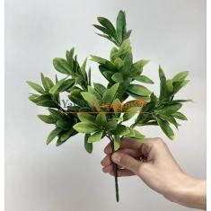 Dekorasyon İçin İç Mekan Bitkileri