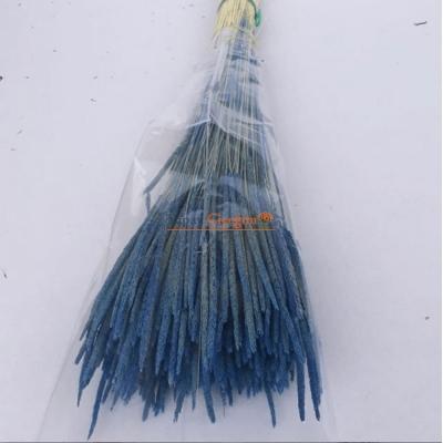 Mavi Solucan Otu - Kuru Çiçek - 1640