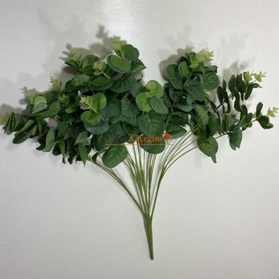Okaliptus Yaprak Demeti Kaliteli Yeşil