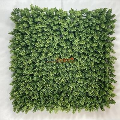 Dikey Bahçe Duvar Kaplama Panelleri 50x50 cm