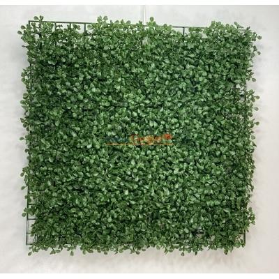 Panel Şimşir Duvar Kaplama Malzemeleri 50x50 cm