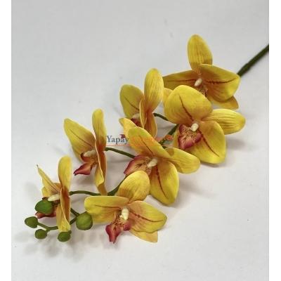 Sarı Islak Orkide Orta Boy