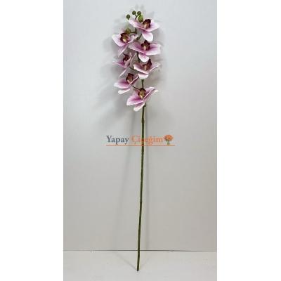 Pembe Islak Orkide Orta Boy