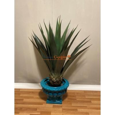 Yapay Aloe Vera Ağacı