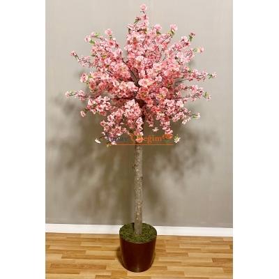 Yapay Sakura Ağaç Kiraz Ağacı