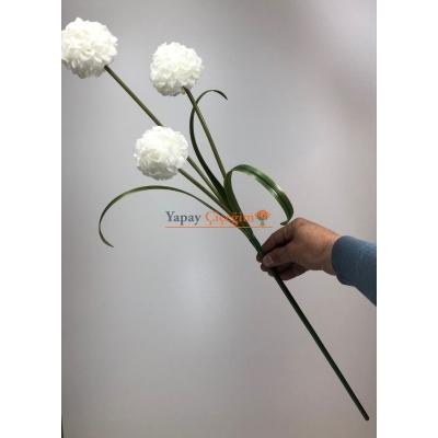 Beyaz Top Çiçek Uzun Vazo ÇiçeğiBeyaz Top Çiçek Uzun Vazo Çiçeği