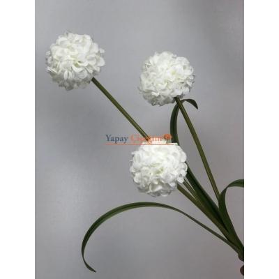 Beyaz Top Çiçek Uzun Vazo Çiçeği