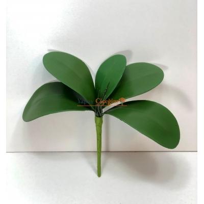 Orkide Yaprağı Orta Boy