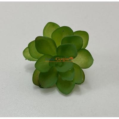 Yeşil Küçük Çiçekler